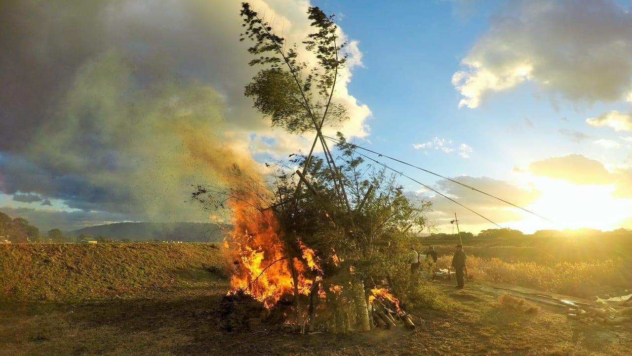 とんど・どんど火祭りのイメージ写真