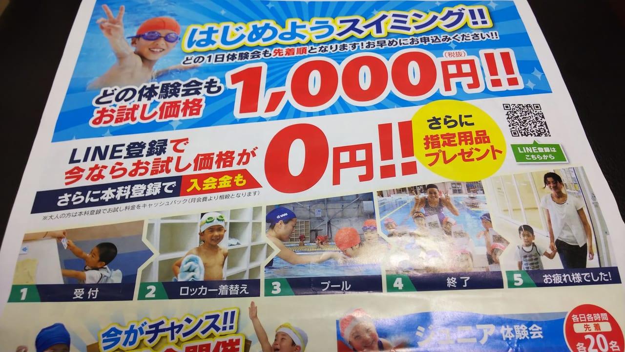 東広島スイミングスクールの体験会のチラシ