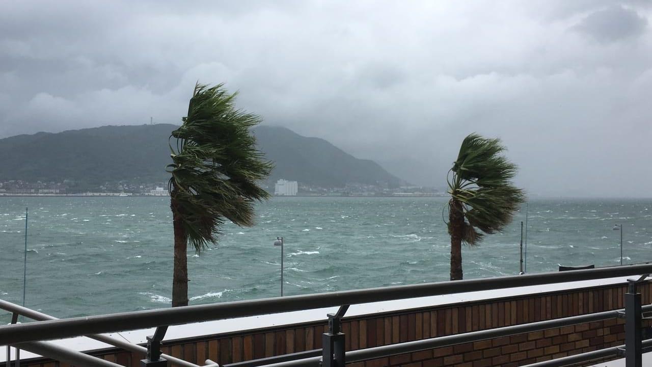 台風・災害